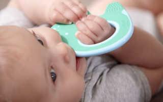 Рейтинг лучших детских прорезывателей для зубов