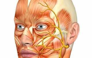 Неврит тройничного нерва симптомы и лечение народными средствами