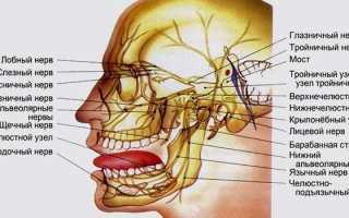 Что такое третичный нерв