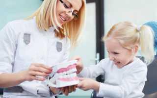 Анатомия молочных зубов