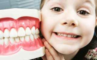 Сколько молочных и постоянных зубов должно быть у детей